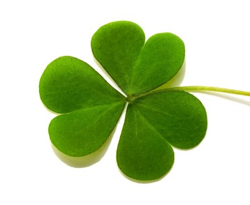 Thumbnail image for the St. Patrick's Day category